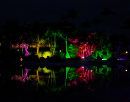 feature-landscape-lighting-2
