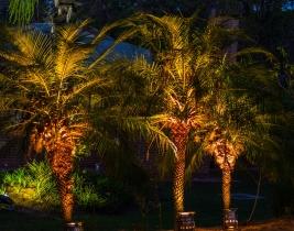 event-garden-lighting