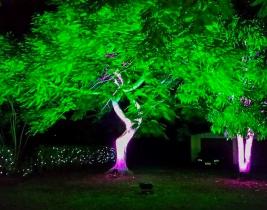 external-garden-lighting